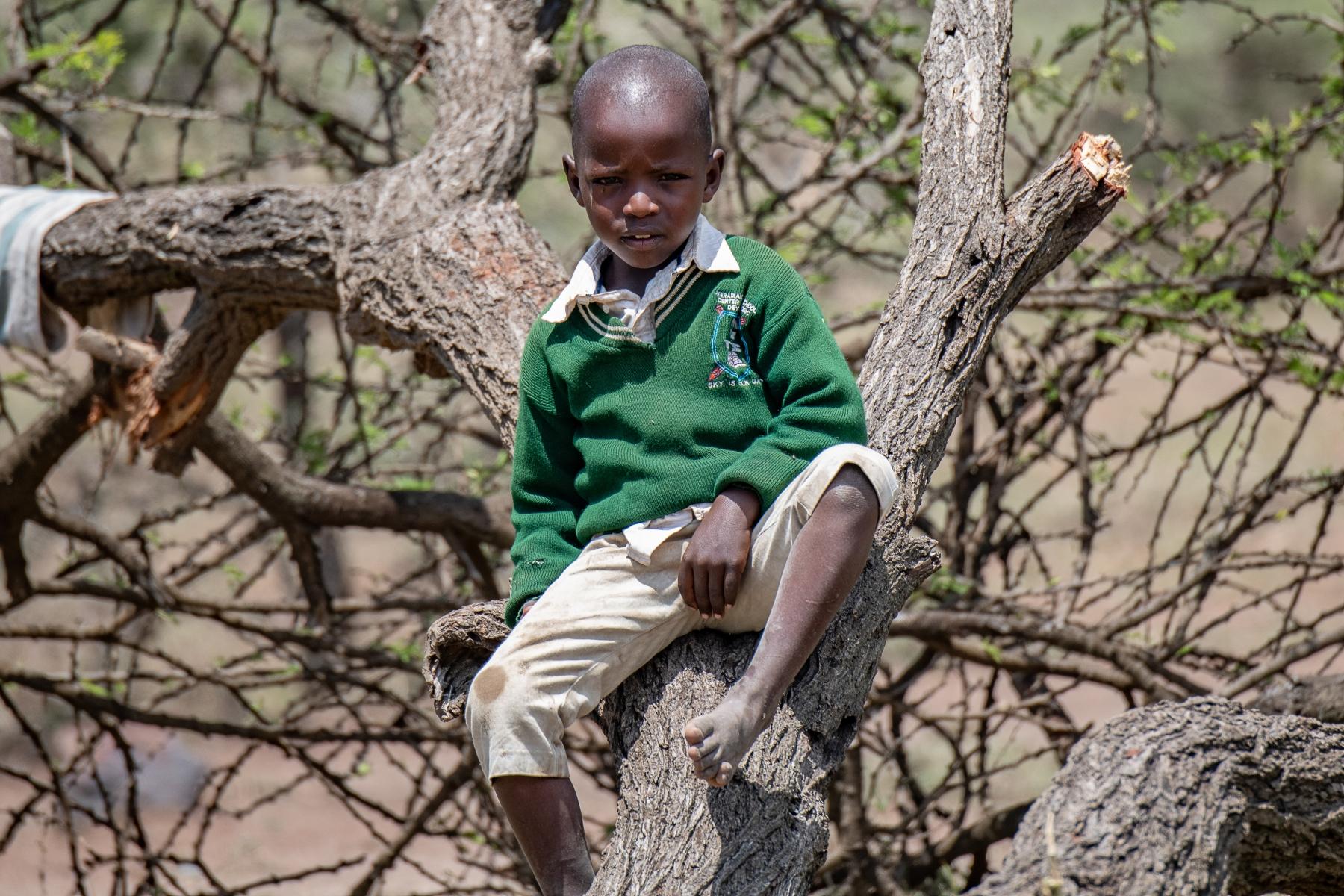 African Boy In A Tree