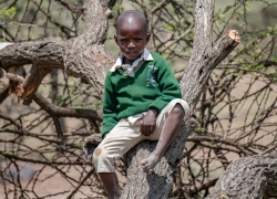 African Boy In A Tree