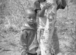little-boys-by-a-tree-Kenya