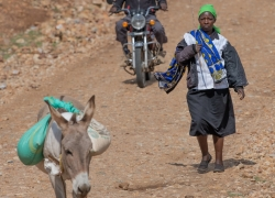 people-and-donkey-on-the-road-Kenya