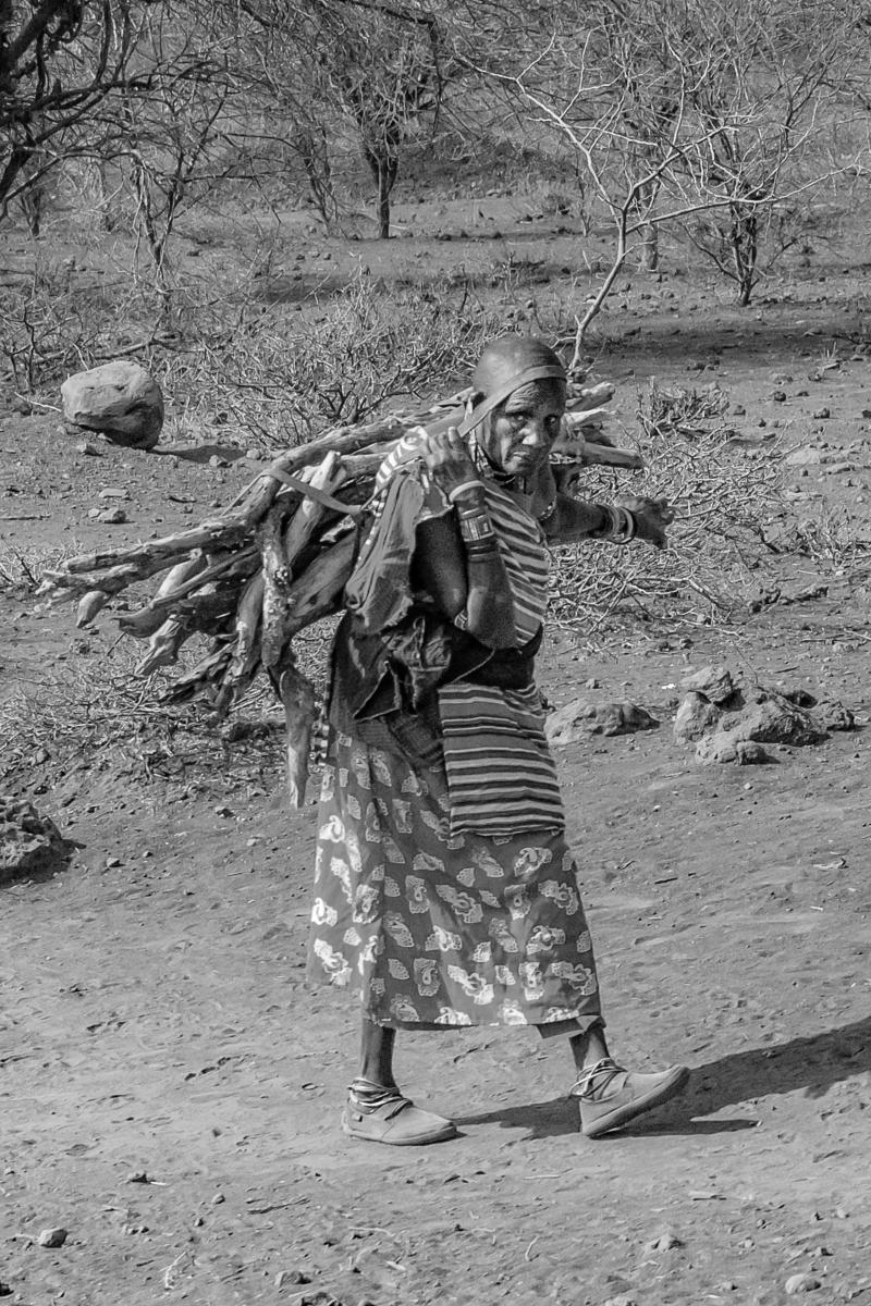 woman-carrying-firewood-Kenya