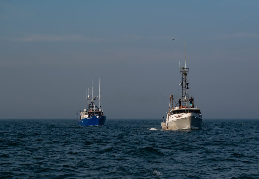 fishing boats in inlet